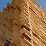 legno strutturale